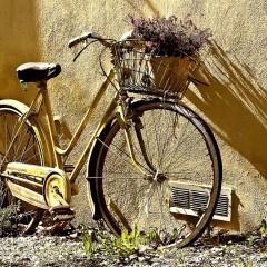 Een specialist in een fiets kopen